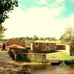 Camino_Gourmet_Arzua3