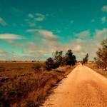 Camino_Gourmet_Hontanas4
