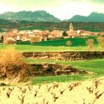 Camino_Gourmet_Najera3