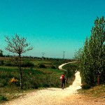 Camino_Gourmet_San-martin2