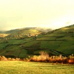 Camino_Gourmet_triacastela4